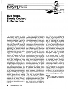 live-frogs-slowly-cooked-to-perfection